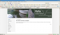 hygyweboldal1.jpg